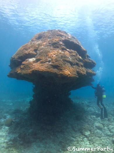 伊良部島 キノコ岩