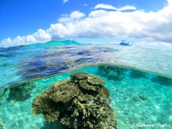 八重干瀬 サンゴ礁と夏空
