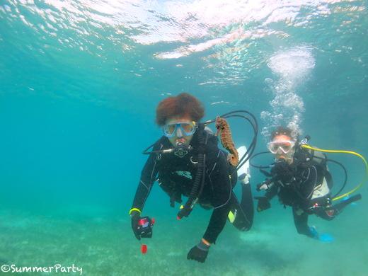 宮古島で体験ダイビング オオウミウマと一緒に