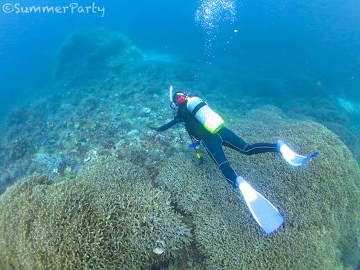 八重干瀬 ユビエダハマサンゴの上を飛ぶ