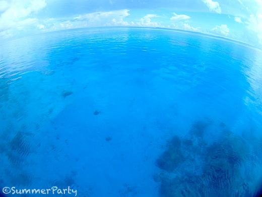 プールのような海