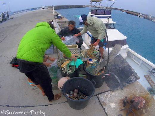 海中清掃で集まったゴミ
