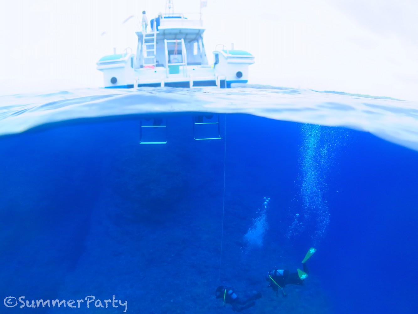 宮古ブルーの海でダイビング