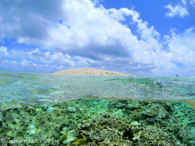 八重干瀬のバラス島
